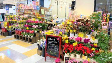 鳥取大通り店