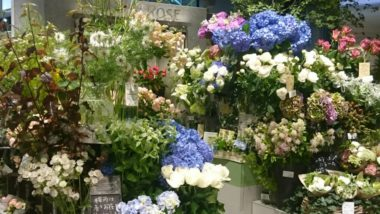 FLEURISTE BON MARCHE ROSE 渋谷モディ店