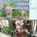 花瓶フェア  ~お部屋の空間に彩りを~