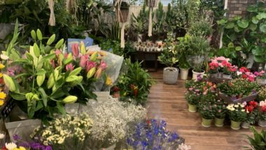 FLOWER COURT Slope 函館店